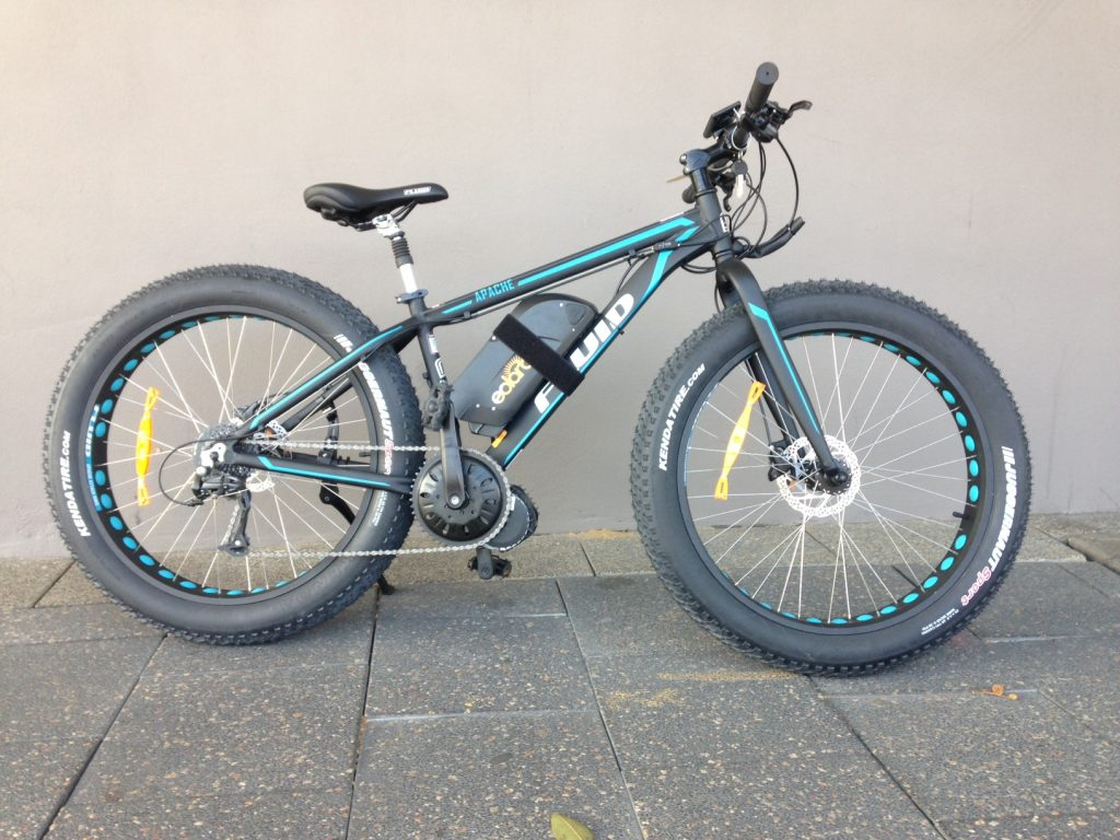 George's Fat Bike