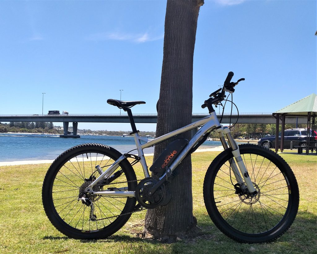 Specialized Epic with Electric Conversion Kit
